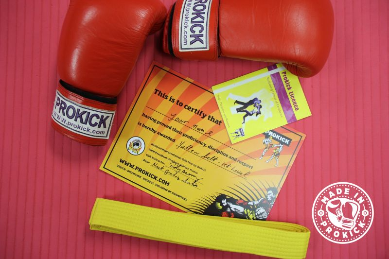 The Next ProKick Grading Day for ProKick Kids & Adults will be Sunday 15th December starting at 10:30am
