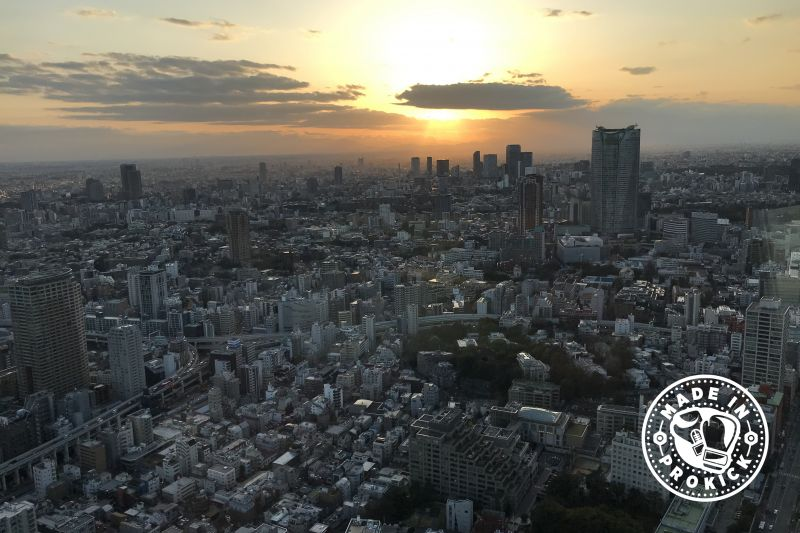 Beautiful view from the top of the Tokyo Tower!